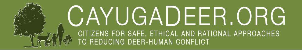 CayugaDeer.org